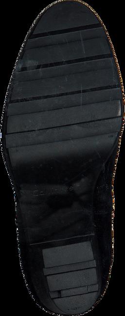 CALVIN KLEIN Bottines SANDY en noir - large