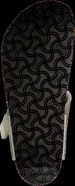 BIRKENSTOCK PAPILLIO Tongs GIZEH en blanc - large