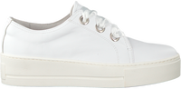 Witte ROBERTO D'ANGELO Sneakers LEEDS  - medium