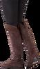 LAMICA Bottes hautes KISA en taupe - small