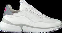 Witte FLORIS VAN BOMMEL Lage sneakers 85303  - medium