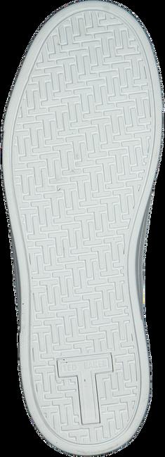 TED BAKER Baskets basses 243066 en blanc  - large