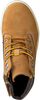 Camel TIMBERLAND Sneakers GROVETON 6IN LACE  - small