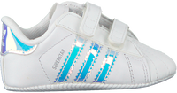 ADIDAS Chaussures bébé SUPERSTAR CRIB en blanc  - medium