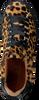 TANGO Baskets CHANTAL en marron - small