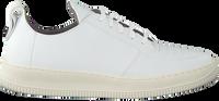 Witte EKN FOOTWEAR Lage sneakers ARGAN LOW SUTRI HEREN  - medium