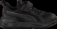 Zwarte PUMA Lage sneakers X-RAY AC INF  - medium