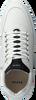 Witte NUBIKK Lage sneakers JIRO JADE  - small