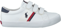 POLO RALPH LAUREN Baskets basses GAFFNEY EZ en blanc  - medium