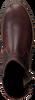 GAASTRA Bottines à lacets CASTOR HGH TMB en marron  - small