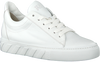 PAUL GREEN Baskets basses 4950-006 en blanc  - small