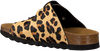 Camel THE WHITE BRAND Slippers BIO BUCKLE  - small