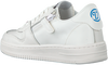 Witte VINGINO Lage sneakers YARI LOW  - small