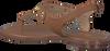 MICHAEL KORS Sandales MK PLATE THONG en cognac - small