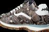 Bruine FLORIS VAN BOMMEL Lage sneakers 85279  - small