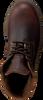 Bruine PANAMA JACK Veterboots AMUR GTX C10 - small