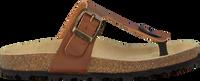 Cognac BRAQEEZ Slippers SEF SPAIN  - medium