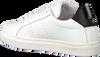 ANTONY MORATO Baskets basses MMFW01248 en blanc  - small
