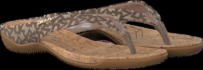 beige DKNY Slippers SARASOTA  - large