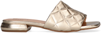 Gouden NOTRE-V Slippers 1318  - medium