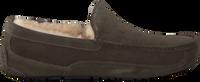 Grijze UGG Pantoffels ASCOT - medium