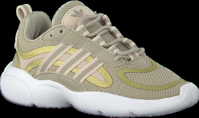Grijze ADIDAS Lage sneakers HAIWEE C  - large
