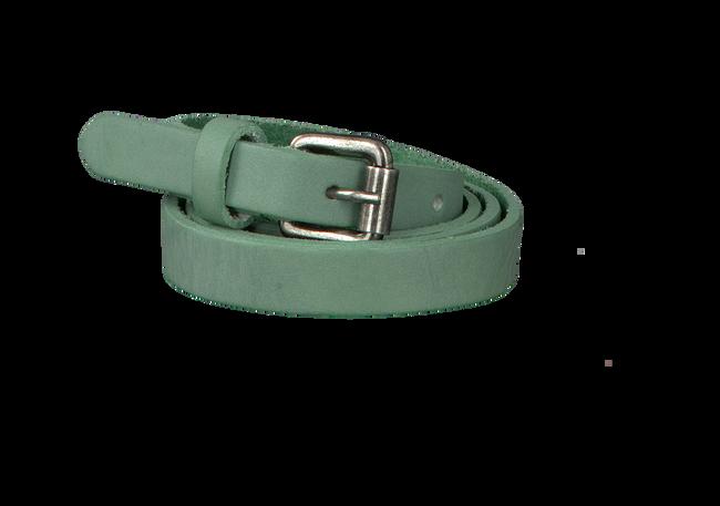 Groene PETROL Riem 15135L - large