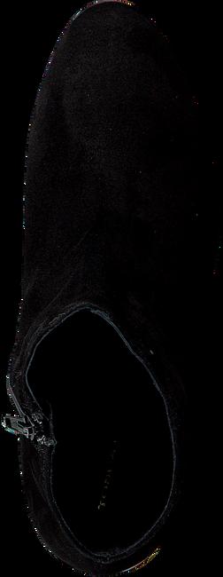 TOSCA BLU SHOES Bottines SF1720S811 en noir - large