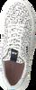 FLORIS VAN BOMMEL Baskets basses 85297 en noir  - small