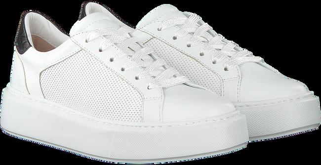 Witte MARIPE Lage sneakers 30421  - large