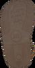 Bruine GIOSEPPO Sandalen VERLAINE  - small