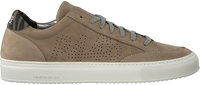 Beige P448 Lage sneakers SOHO MEN  - medium