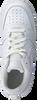 NIKE Baskets basses COURT BOROUGH LOW 2 (GS) en blanc  - small